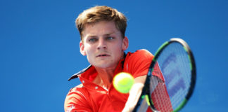 david-goffin-image