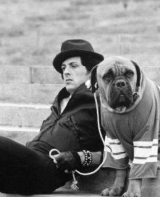 Sylvester Stallone pics