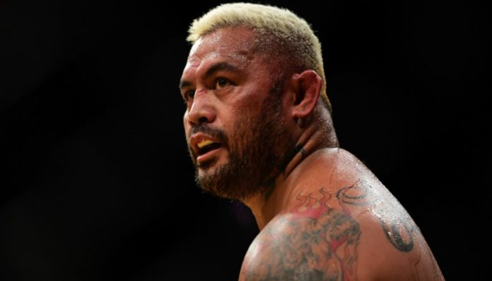 Mark Hunt Image 696x397